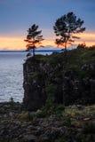 Solnedgång på sjön och träden Royaltyfria Bilder