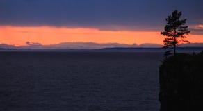 Solnedgång på sjön och trädet Royaltyfri Fotografi