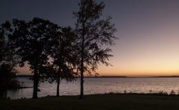 Solnedgång på sjön, träd i kontur fotografering för bildbyråer