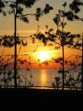 Solnedgång på sjösidan Royaltyfri Fotografi