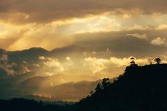 Solnedgång på skogen med mist Arkivbild