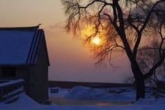 Solnedgång på snöfält Royaltyfria Foton