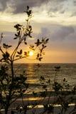 Solnedgång på St Pete Royaltyfria Bilder