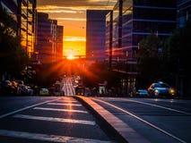 Solnedgång på stadsgatan royaltyfria bilder