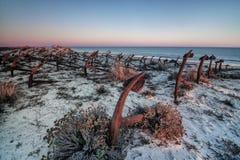 Solnedgång på stranden av Barril, kyrkogård av ankaren Tavira Arkivbild
