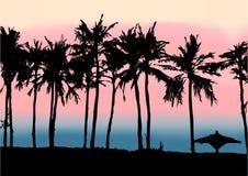 Solnedgång på stranden av Persiska viken Royaltyfri Bild