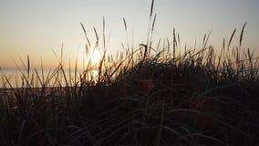 Solnedgång på stranden för baltiskt hav stock video