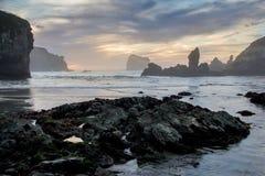 Solnedgång på stranden för sanddollar i Kalifornien Royaltyfri Foto
