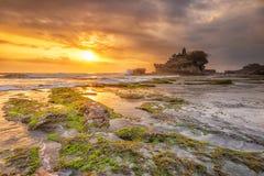Solnedgång på stranden mycket av grön mossa Arkivfoto