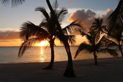 Solnedgång på stranden på Bahamas fotografering för bildbyråer