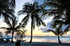 Solnedgång på stranden på Bahamas royaltyfria foton