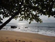 Solnedgång på stranden på Stilla havet Fotografering för Bildbyråer
