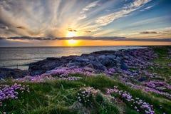 Solnedgång på Tangasdale - HDR royaltyfria foton