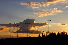 Solnedgång på vägen Arkivbild
