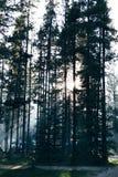 Solnedgång på vår campingplats Royaltyfri Foto