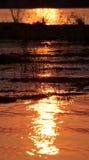 Solnedgång på Zambeziet River _ Gräns av Zambia och Zimbabwe Royaltyfri Fotografi
