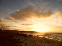 Solnedgång Pebble Beach, Kalifornien Arkivfoton