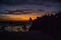 Solnedgång, sikt av havet och palmträd Apo-ö, Philippines Arkivbild