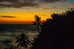 Solnedgång, sikt av havet och palmträd Apo-ö, Philippines Fotografering för Bildbyråer