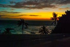 Solnedgång, sikt av havet och palmträd Apo-ö, Philippines Royaltyfri Foto