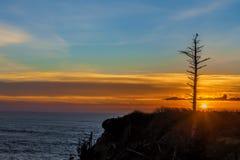Solnedgång Silhouetted ensamt hinder Royaltyfri Fotografi