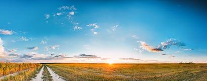 Solnedgång, soluppgång över lantligt ängfält och landsväg bygd royaltyfria bilder