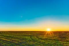 Solnedgång soluppgång, sol över lantligt bygdvetefält Vår Royaltyfri Fotografi