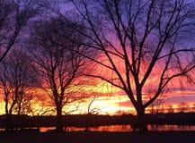 Solnedgång som reflekterar över Charles River Arkivbild