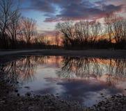 Solnedgång som reflekterar i en pöl Arkivfoto