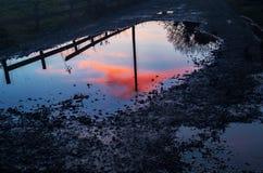 Solnedgång som reflekterar på pöl Arkivbild
