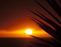 Solnedgång Tenerife, kanariefågelöar, Spanien Fotografering för Bildbyråer