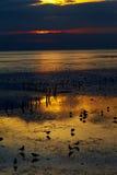 solnedgång thailand Royaltyfria Foton