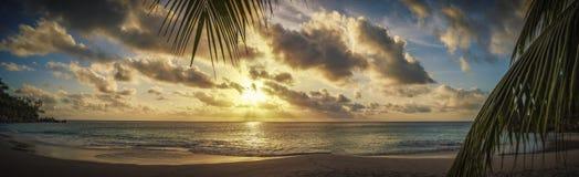 Solnedgång till och med en palmblad på paradisstrand 1 Arkivfoto