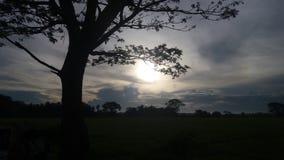 Solnedgång till och med mörker fotografering för bildbyråer