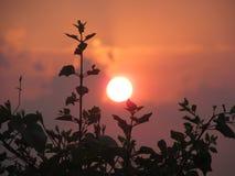 Solnedgång till och med mina linser Arkivbild