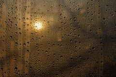 Solnedgång till och med misted exponeringsglas med droppar och droppander royaltyfri fotografi