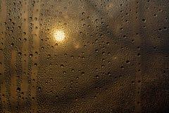 Solnedgång till och med misted exponeringsglas med droppar och droppander royaltyfria bilder