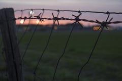 Solnedgång till och med staketet Royaltyfri Bild