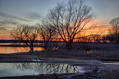 Solnedgång till och med träden Arkivfoton