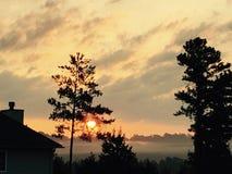 Solnedgång utöver träden royaltyfria bilder