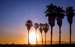 solnedgång venice Royaltyfria Bilder