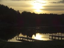 Solnedgång vid skogsjön royaltyfri bild