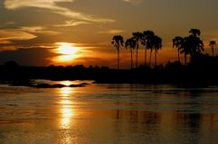 Solnedgång Zambezi arkivbilder