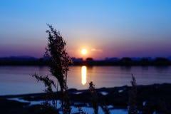 solnedgångar Arkivbilder