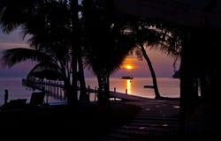 Solnedgångar silhouette purple Arkivbilder