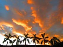 SolnedgångAvellana strand Costa Rica arkivfoton