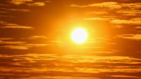 Solnedgångbakgrund stock video