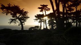 SolnedgångbildStilla havet arkivfoton