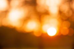 Solnedgångbokehbakgrund från naturligt Royaltyfri Bild