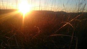 SolnedgångBulgarien Arkivfoto